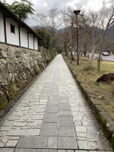 坂本の石垣1