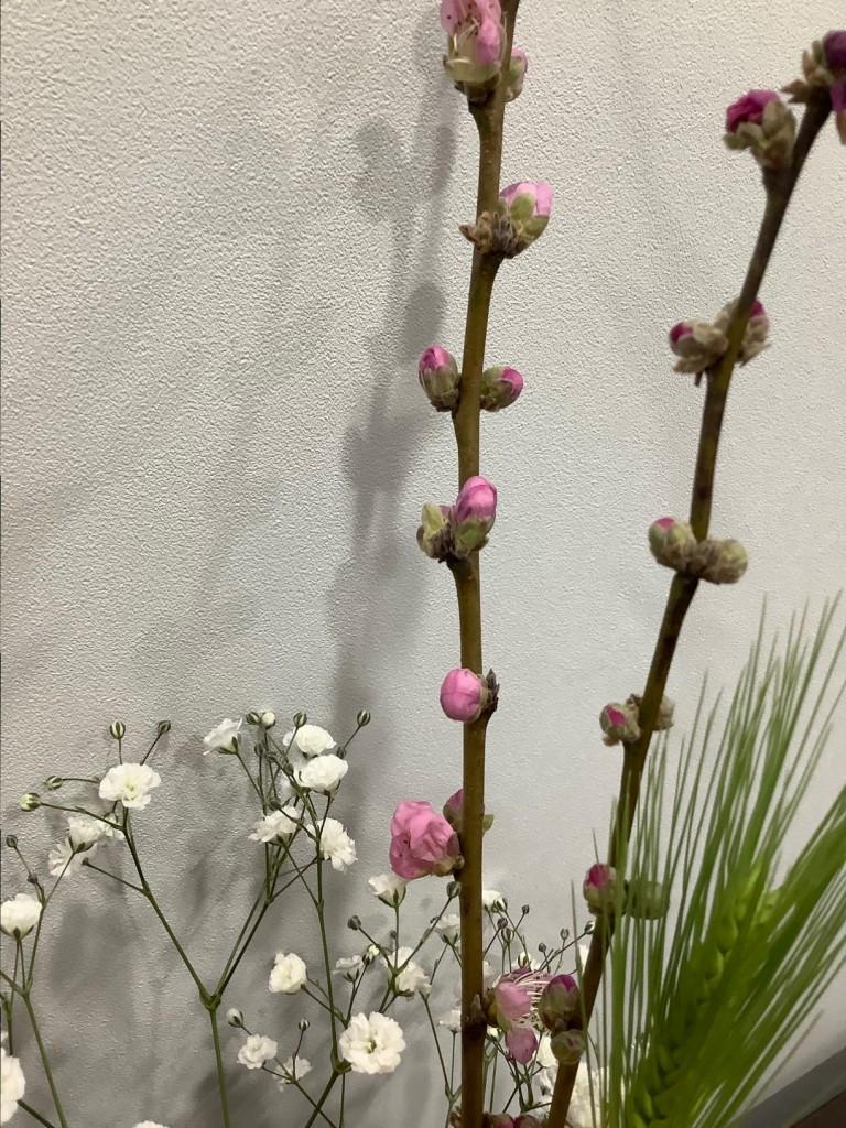 お雛祭りのお花 3