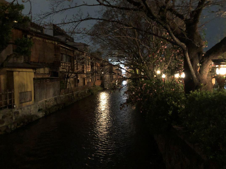 祇園夜桜2020_3