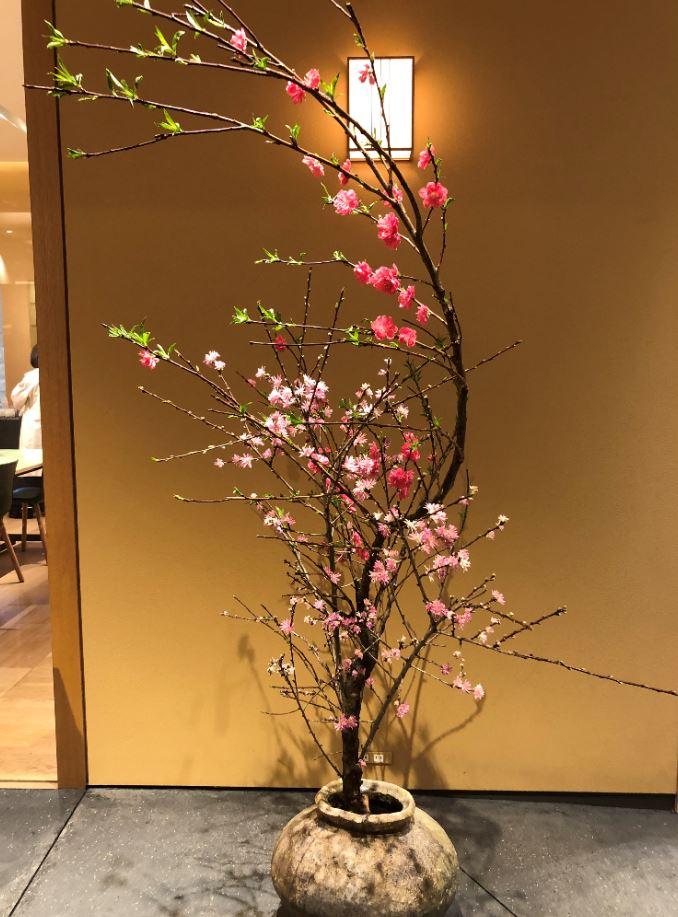 KOTOSHINAさんで飾られている枝もの1