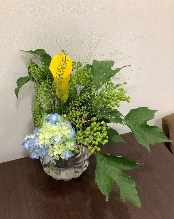 コギトラボのオフィスにお花