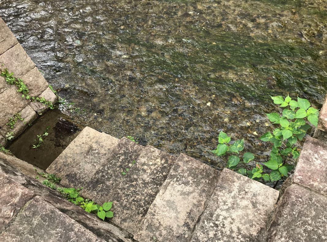 白川へ降りる階段1