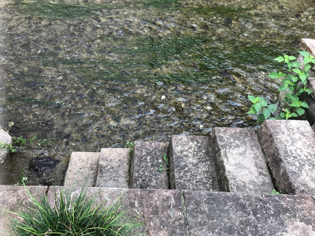 白川へ降りる階段2
